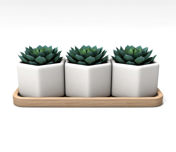 Small planter pots series